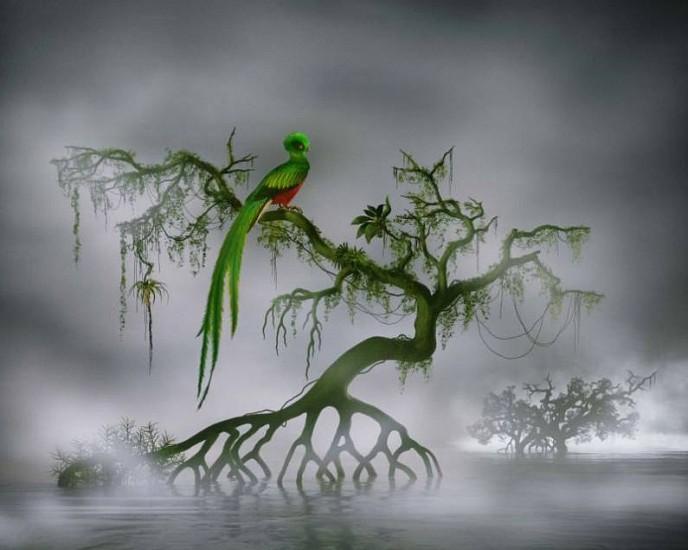 Didier Massard, L'Oiseau (The Bird) 2008, Chromogenic print (color)